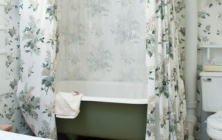 Hermitage master bath with shower