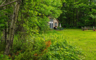 The Studio, a charming, private studio cottage surrounded by forest